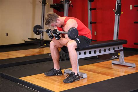seated barbell curl seated grip concentration barbell curl exercise