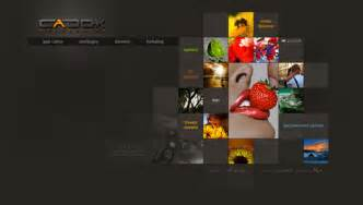 Best Web Design Homepages Visual Direction In Web Design