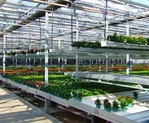 greenhouse benches commercial benches double rail carts commercial greenhouse structures systems design ggs