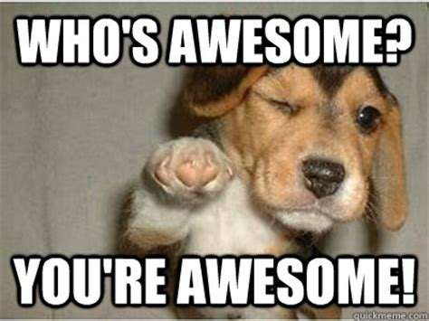 Who's awesome? you're awesome!   Misc   quickmeme