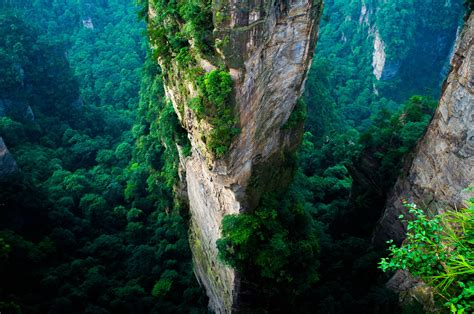 forest china cliff mountain green summer national