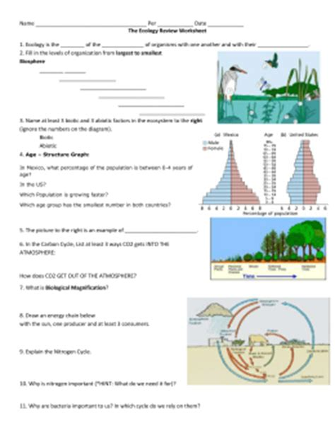 Ecology Review Worksheet 2 by The Great Big Ecology Review Worksheet