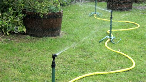 advice on watering your grass lawn lawn tech