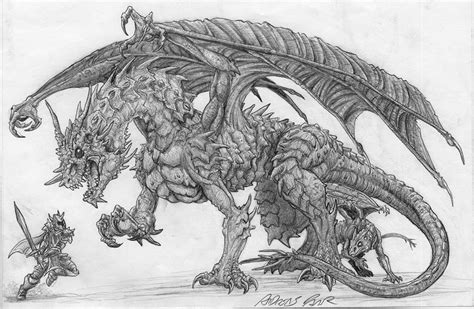 the best drawings of dragons 25 stunning and realistic dragon drawings from around the