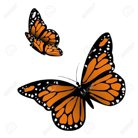 monarch design monarch butterfly clipart free bbcpersian7 collections