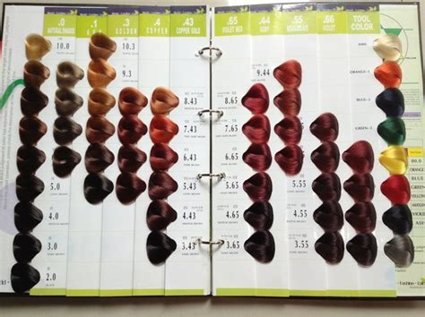 color by numbers salon 14 things you wished your hairstylist told you before