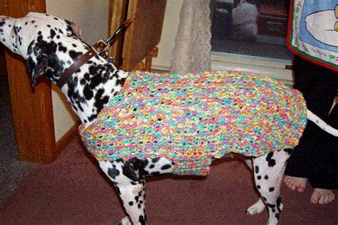 pattern for xl dog coat free crochet patterns for dogie sweaters crochet tutorials