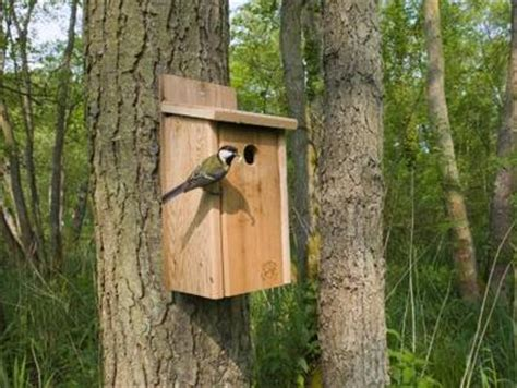 bird nest boxes for your garden birds easier