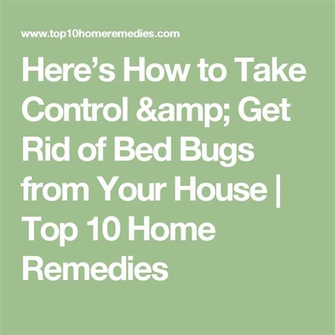 how to take control in bed 17 best ideas about bed bugs on