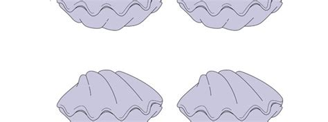 printable clamshell label clam cut out small