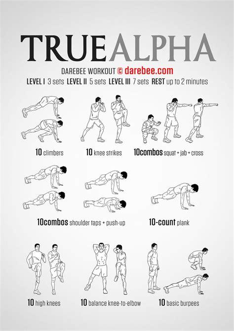 trainingsplan für muskelaufbau zuhause 16 besten workouts bilder auf 220 bungen fitness