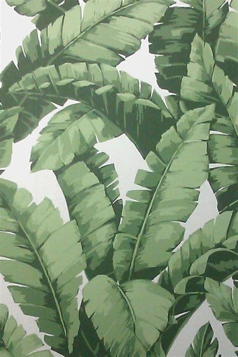 banana tropical wallpaper banana tree wallpaper project tiki bar pinterest