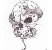 Cool Drawings Of Skulls And Snakes  Drawing Images