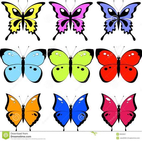 Butterfly Set butterfly set stock image image 8560901