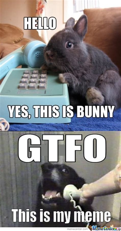 yes this is hello yes this is bunny by ben meme center