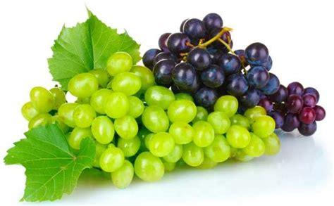 imagenes de uvas naturales para qu 233 sirve la uva buena salud