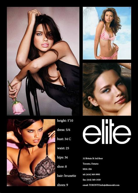 how to create a comp card template 25 best ideas about model comp card on