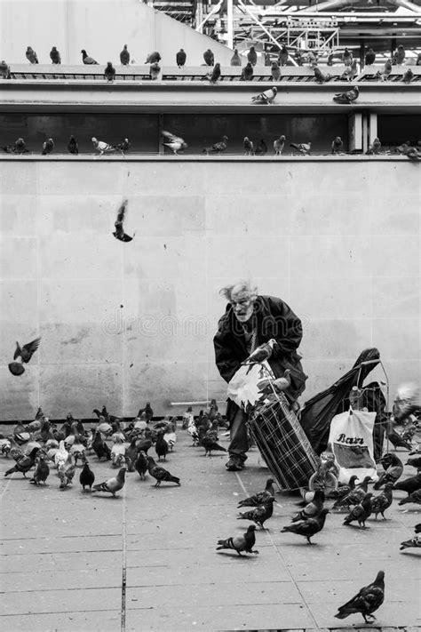 alimentazione piccioni piccioni d alimentazione dell uomo anziano in bianco e