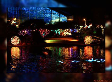 The River Of Lights by River Of Lights Tickets On Sale Visit Albuquerque Blog