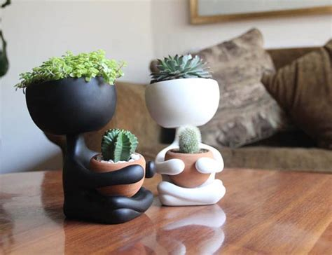 robert planta  adorable plant pot design swan