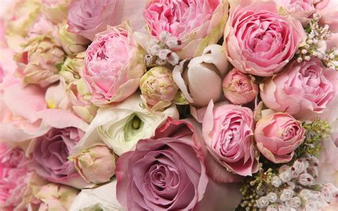 roses and peonies bouquet wallpaper 18426