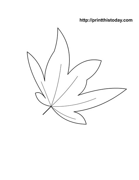 maple leaf coloring page free free coloring pages of maple leaves