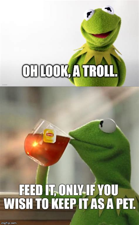 Don T Feed The Trolls Meme - kermit s advice regarding trolls imgflip