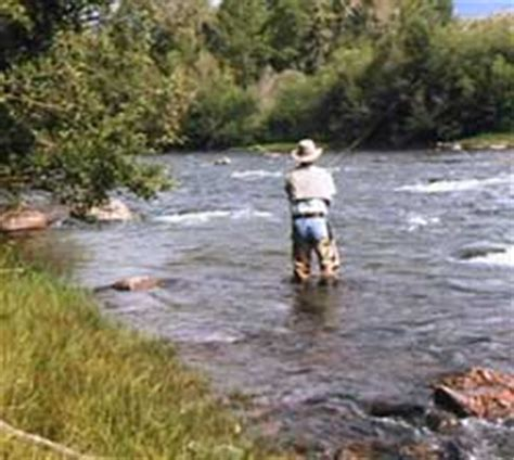 gunfire on the ranch blue river ranch books silverthorne and dillon guided fly fishing blue river