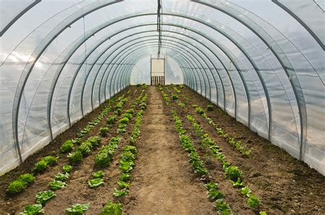 hoop house greenhouse plans hoop house plans free the best you ll find on the internet