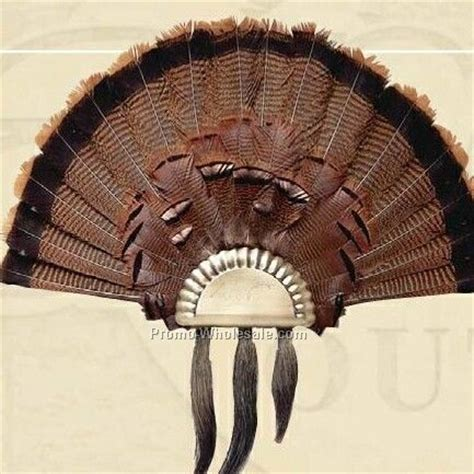 very popular images turkey wing and fan display