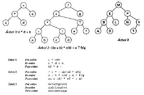 arbol binario preorden arboles en c programaci 243 n