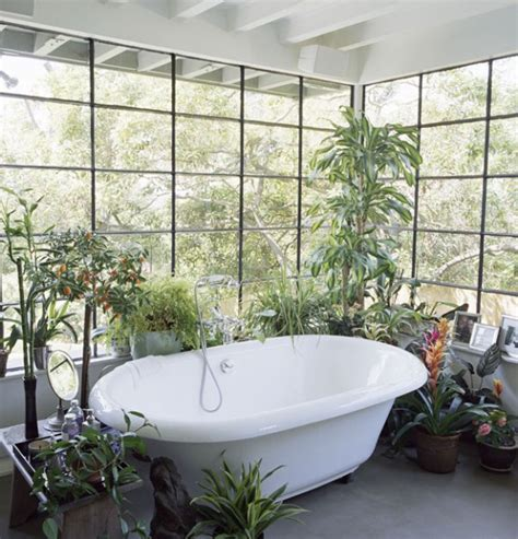 Indoor Plants Bathroom by 48 Bathroom Interior Ideas With Flowers And Plants Ideal