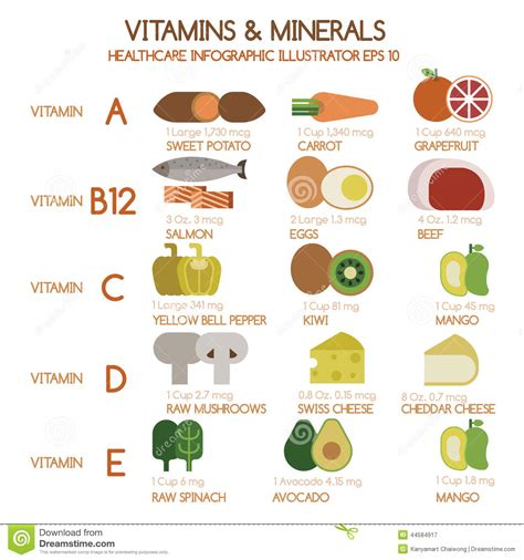 u protein trace vitamins and minerals foods illustrator set 1 stock vector