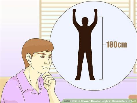 4 Meters To Feet how to convert human height in centimeters to feet with