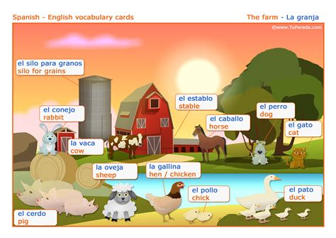 ver imagenes en ingles vocabulario espa 241 ol ingl 233 s la granja the farm
