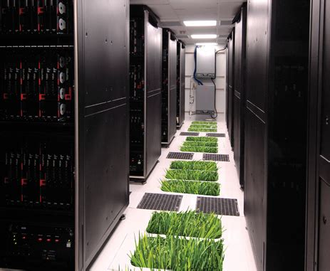 Senter Gree green data centers environmentally sustainable it growth
