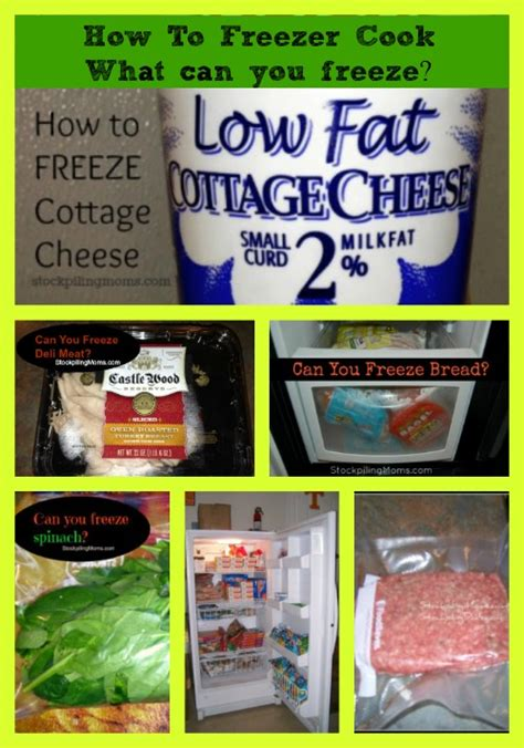 Can You Freeze Cottage Cheese by Can You Freeze Eggplant Myideasbedroom