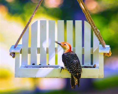 swing bird plans for porch swing bird feeder woodworking projects