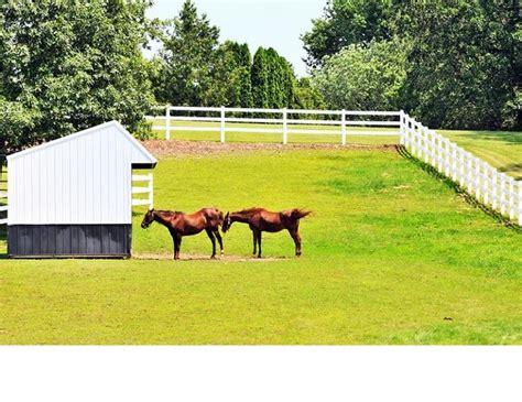 horse farm layout ideas  pinterest horse