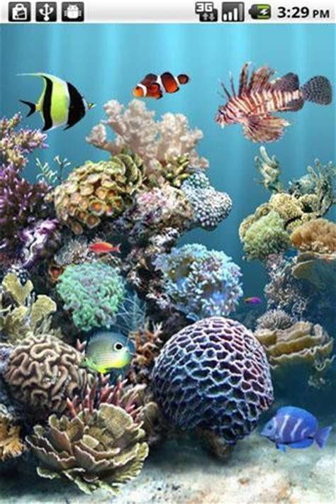 anipet freshwater aquarium live wallpaper apk anipet aquarium live wallpaper free android live wallpaper