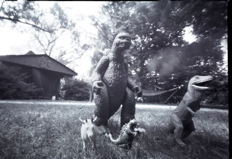 a pinhole pinhole photography gertie is higgelty piggelty