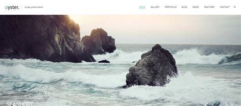 drupal themes for photographers 10 creative drupal themes for your website wdexplorer