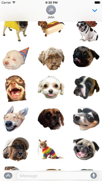 Meme Face App - dog face funny dog memes and faces app download