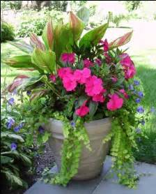 shades container garden and front porches on pinterest
