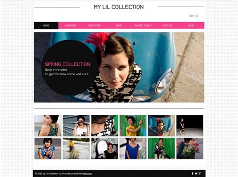 templates for retail website 20 retail website themes templates free premium