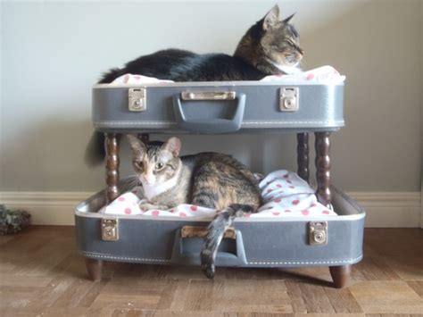 Bunk Beds For Cats 10 Beds In A Suitcase For Pets Hometone