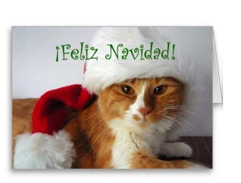 imagenes de animales navidad postales de animales para navidad 2016 animalesmascotas