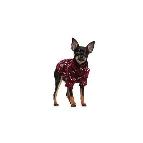 Mini Pinscher Shedding by Miniature Pinscher Puppies Breed Info Petland Frisco Tx
