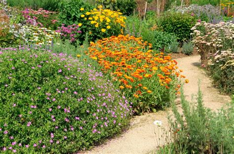 your garden could look like this if you xeriscape eieihome