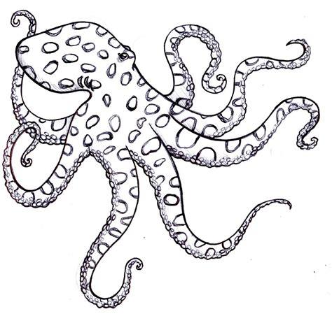 simple octopus template www imgkid com the image kid